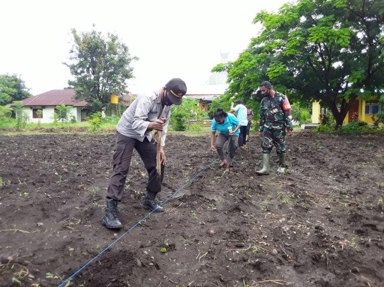 Sinergitas TNI -Polri untuk Ketahanan Pangan